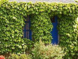 portes et fenêtre foto