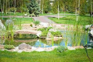 kleine vijver in het park foto