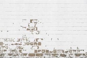 muur foto