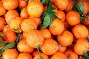 mandarijnen foto