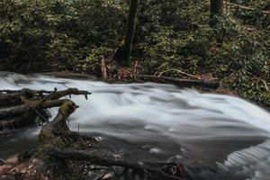 time-lapse van rivier in de buurt van bomen foto