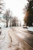 besneeuwde weg en bomen foto