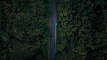 luchtfoto van de weg omgeven door bomen