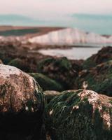 mos groeit op rotsen in kustlandschap foto