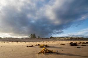 bewolkte dag op het strand foto