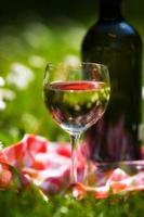 witte wijn foto