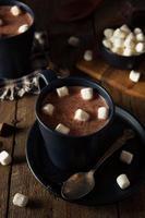 zelfgemaakte warme warme chocolademelk