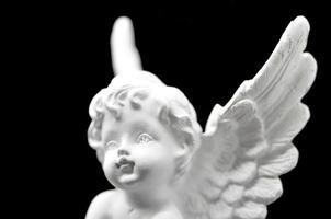 witte engel foto