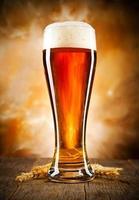 bier foto