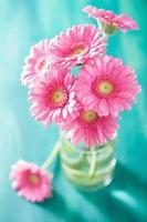 mooi roze gerberabloemenboeket in vaas foto