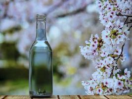 prachtige bloeiende japanse kers foto