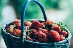 mand met aardbeien foto