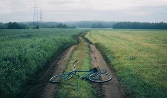 blauwe fiets op groen gras