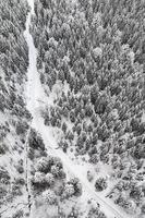 luchtfoto van met sneeuw bedekte bomen