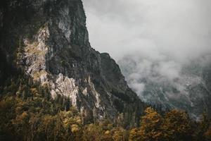 humeurige bergen en bomen foto