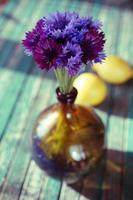 korenbloem (centaurea cyanus) in de vaas foto