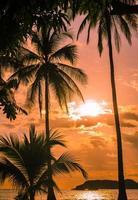 geweldige zonsondergang - manuel antonio, costa rica foto