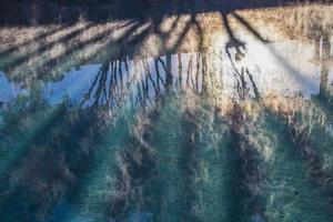 zonnestralen op het zwembad foto