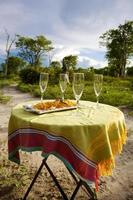 safari champagne in moremi game reserve. Namibië foto