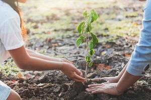 kind en moeder die een jonge boom planten foto