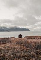bruine schuur aan de kust