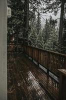 houten dek in bos