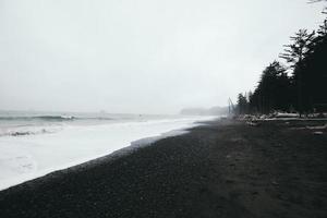 grijswaardenfotografie van kust foto