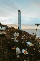 witte vuurtoren aan de kust foto