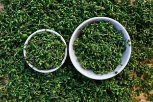 close-up groene verse salae in witte kom op bamboe mand foto