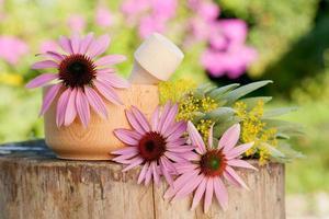 vijzel met zonnehoed en geneeskrachtige kruiden foto