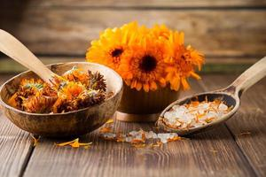 calendula homeopathisch. foto