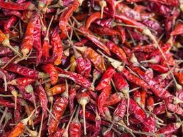 rode gedroogde chili foto