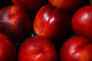 nectarine, nectarines foto