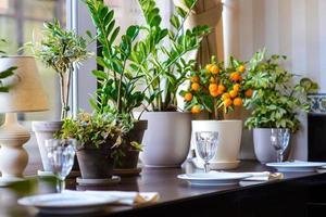 lege glazen in restaurant op florale achtergrond foto