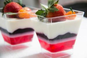 drielaagse monsters panna cotta foto