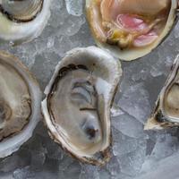 verscheidenheid aan vers gepelde rauwe oesters foto