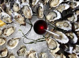 geopende oesters op ijs