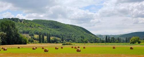 panorama van hooibergen op veld gedurende de dag