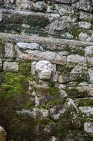 schedel snijwerk in bakstenen muur