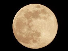 close-up van een gele maan