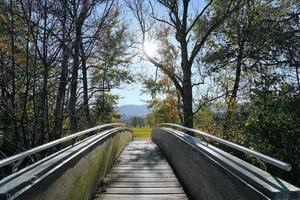 houten brug bij de greifensee