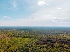 luchtfoto van groene bomen en lucht