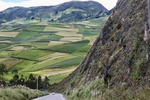 velden op een heuvel op een berg foto