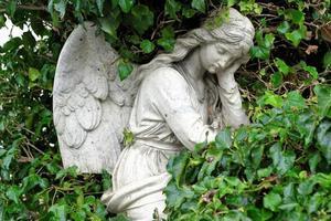 engel sculptuur onder groene bladeren