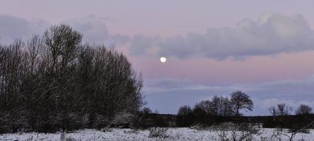 pastel hemel en de maan