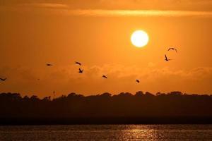 zonsondergang in florida foto