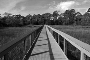 promenade in het moerasgebied