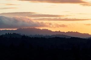 silhouet van bomen bij zonsondergang