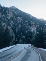grijze asfaltweg tussen bomen overdag