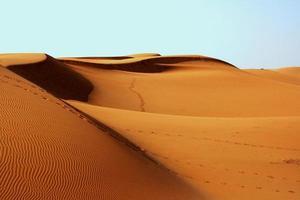 voetafdrukken in Afrikaanse woestijn